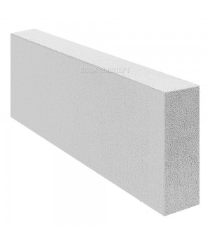 Блок перегородочный ПГС 300*100*600 D600